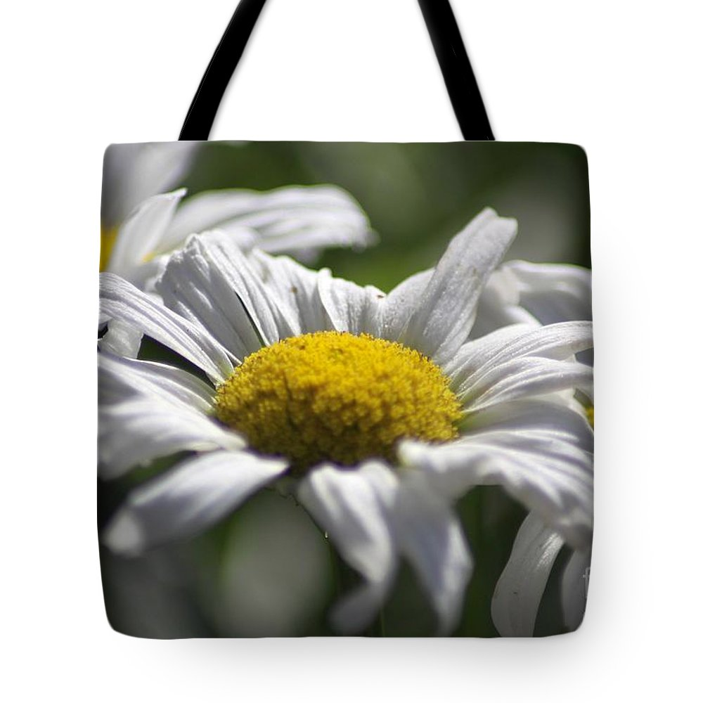 Daisy Tote Bag featuring the photograph Colorful Blooming Daisies 004 by Mrsroadrunner Photography