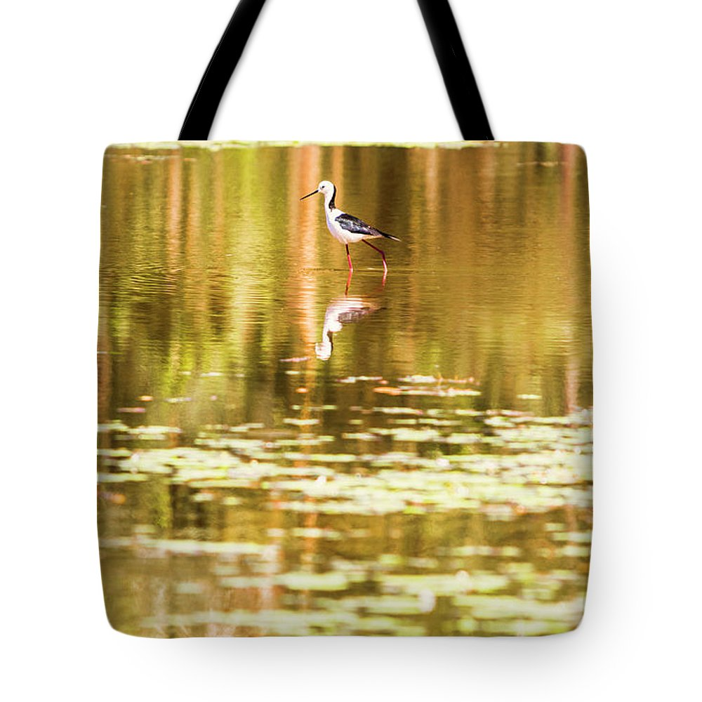 River Tote Bag featuring the photograph Colourful Shallows by Jorgo Photography - Wall Art Gallery