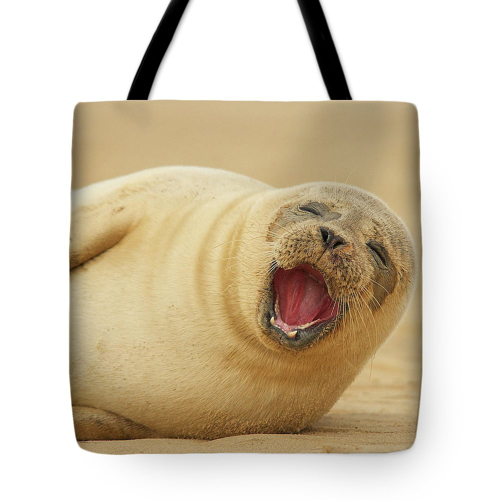 Animal Themes Tote Bag featuring the photograph Common Seal by Copyright Alex Berryman