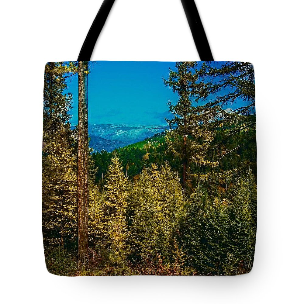 Tote Bag featuring the photograph Consecrated Conception by Dan Hassett