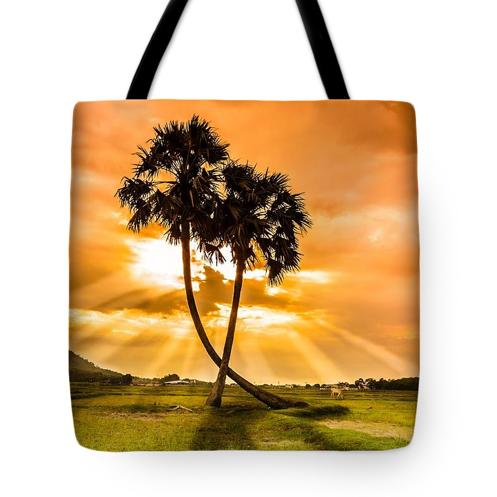 Love Tote Bag featuring the photograph Couple by Lam Loi