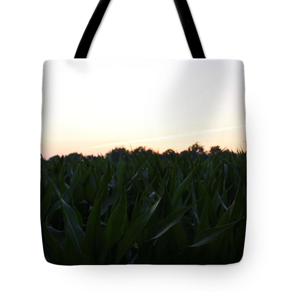Corn Stalks Tote Bag featuring the photograph Crops by Brittany Galipeau