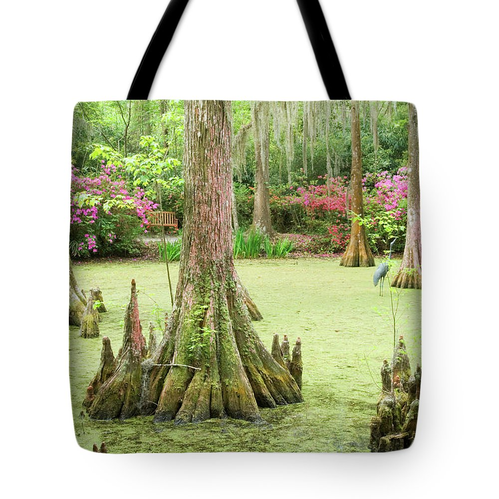 Outdoors Tote Bag featuring the photograph Cypress Swamp by Tony Sweet