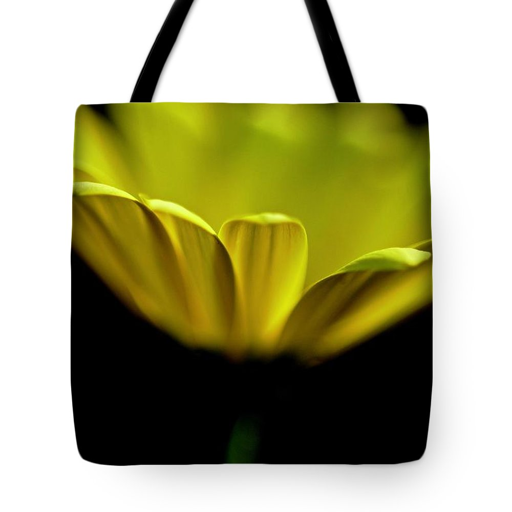 Photography Tote Bag featuring the photograph Daisy by Jeffrey PERKINS