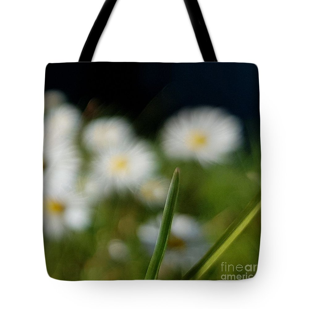 Tote Bag featuring the photograph Daisy Landscape by Paola Baroni