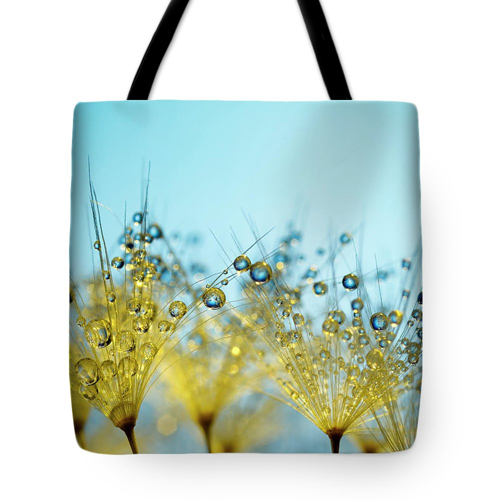 Yellow Tote Bag featuring the photograph Dandelion And Dew - Gold Abstract Macro by Thomasvogel