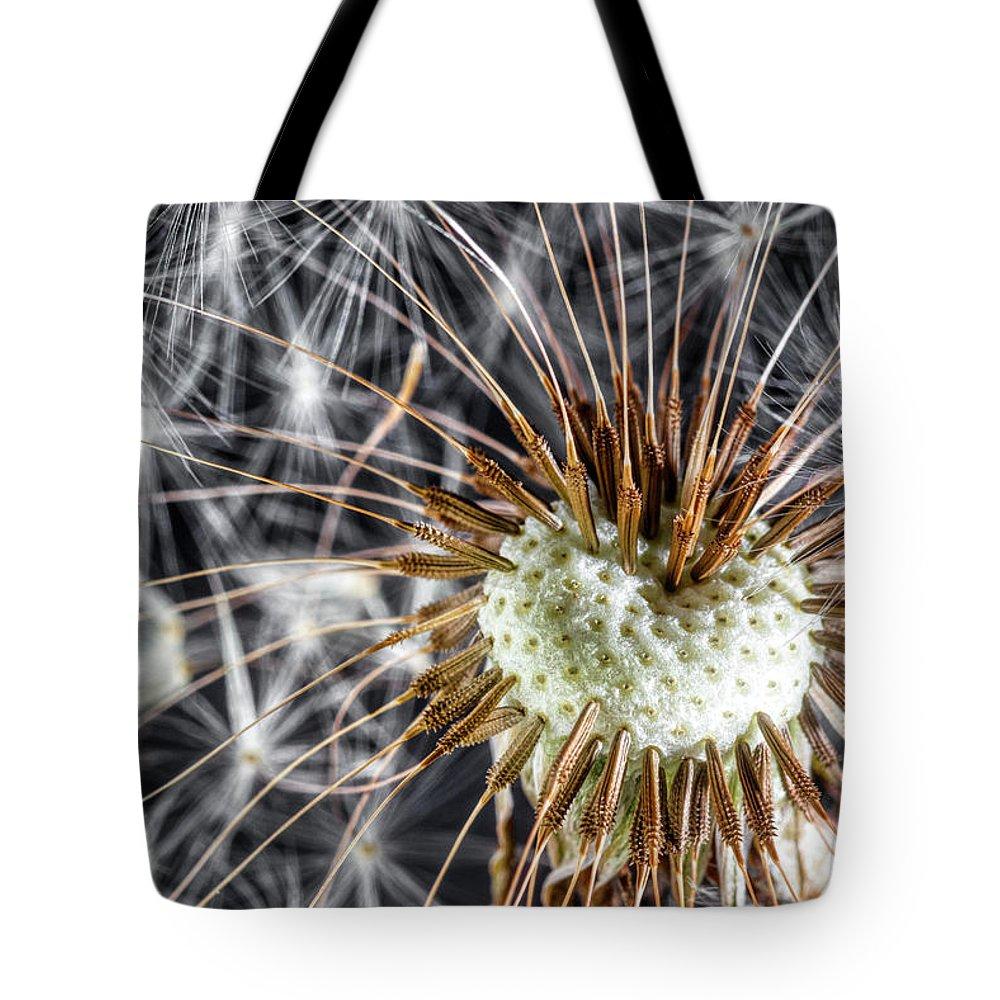 Dandelion Tote Bag featuring the photograph Dandelion Seed Pod by Tom Mc Nemar