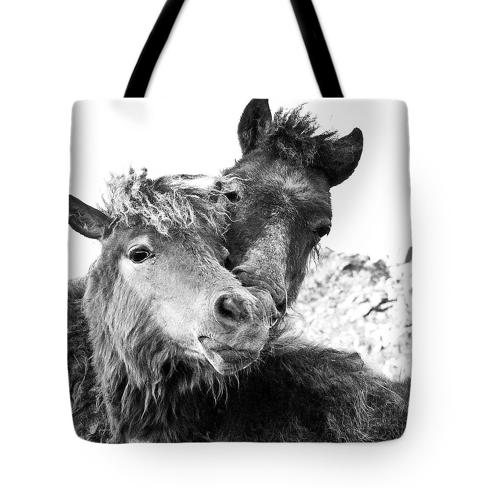 Working Animal Tote Bag featuring the photograph Dartmoor Ponies by Adam Hirons Photography