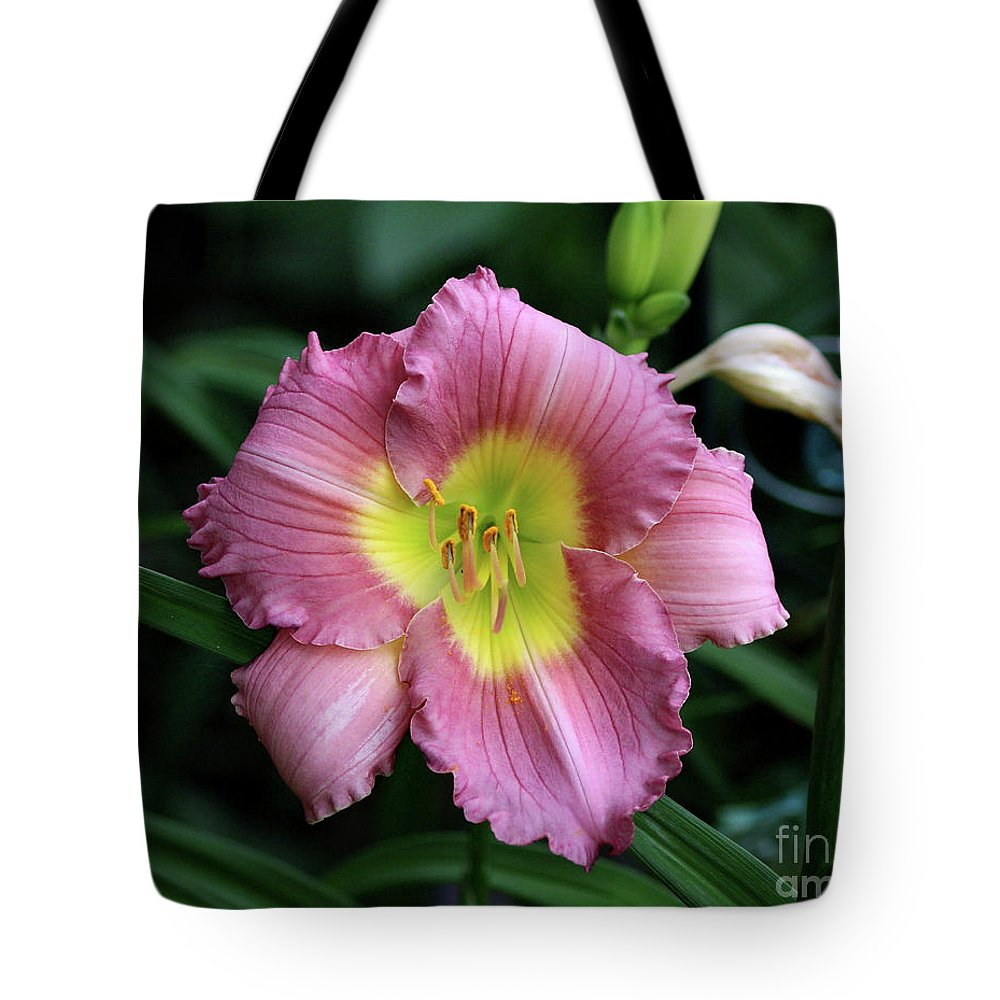 Flower Tote Bag featuring the photograph Day Lilli by Lori Tordsen