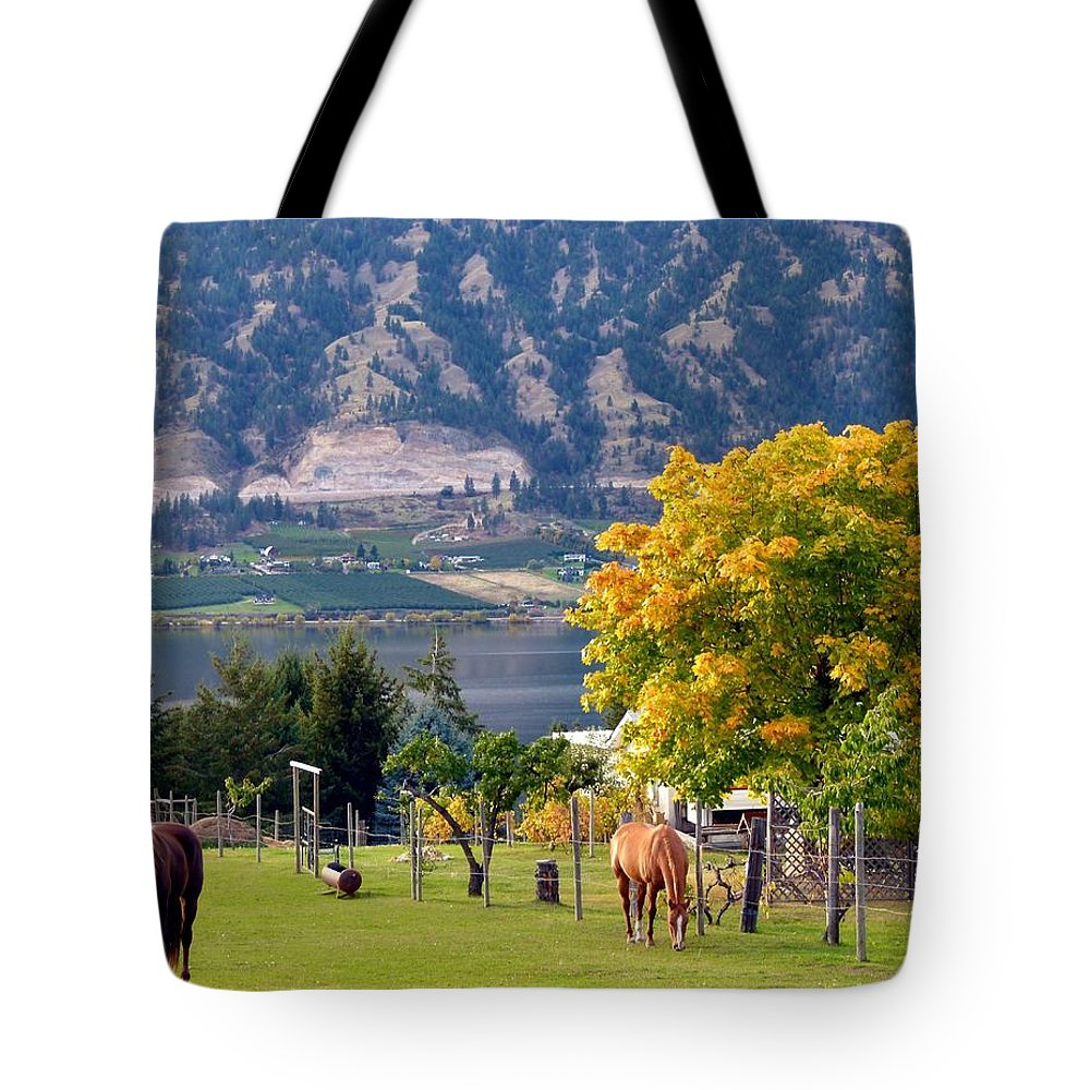 Horses Tote Bag featuring the photograph Days Of Autumn 25 by Will Borden