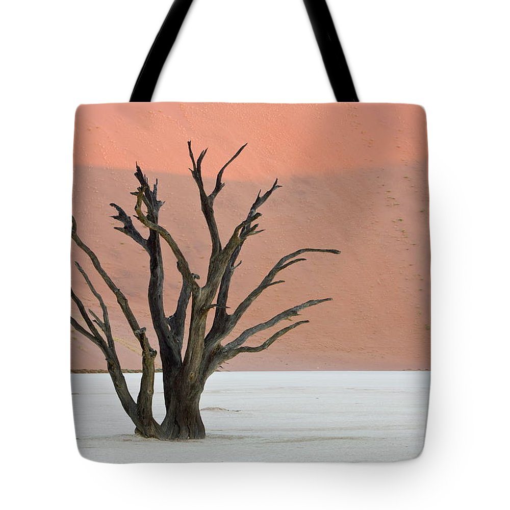 Scenics Tote Bag featuring the photograph Dead Vlei Sossusvlei Africa Namibia by Thorsten Milse / Robertharding