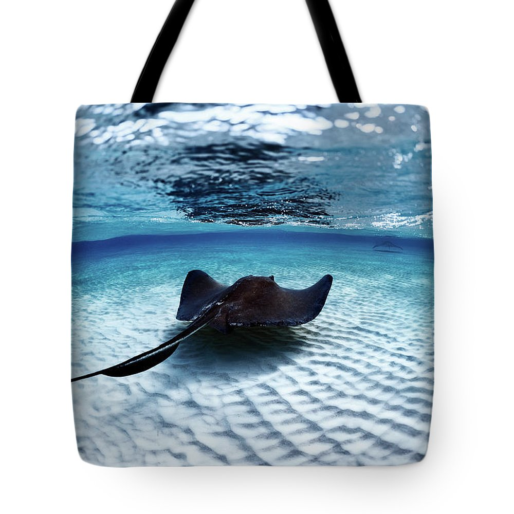Underwater Tote Bag featuring the photograph Deadly Stingray by Extreme-photographer