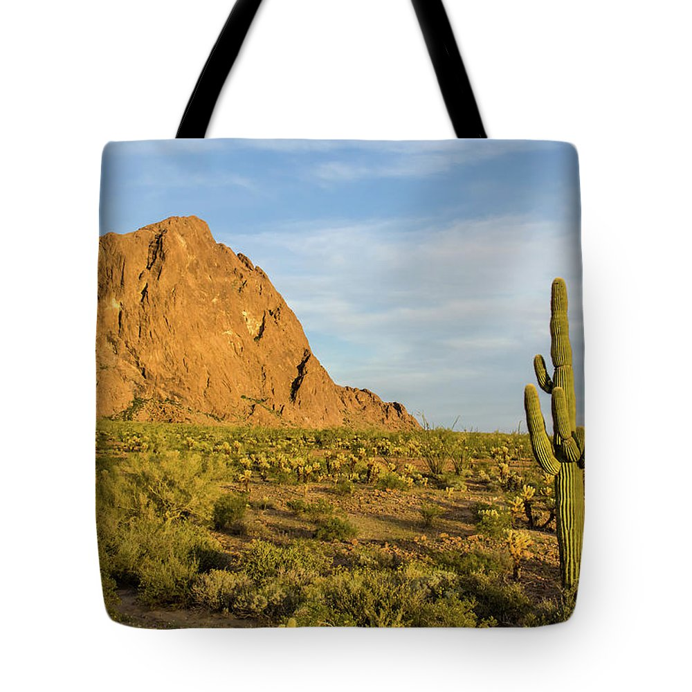 Geology Tote Bag featuring the photograph Desert Mountain Cactus Classic by Photo By Chris Lemmen Www.chrislemmenphotography.ca