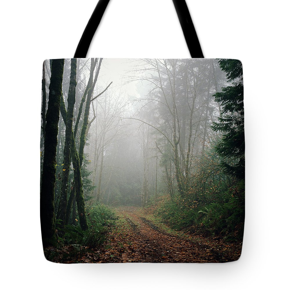 Tranquility Tote Bag featuring the photograph Dirt Road Leading Through Foggy Forest by Danielle D. Hughson