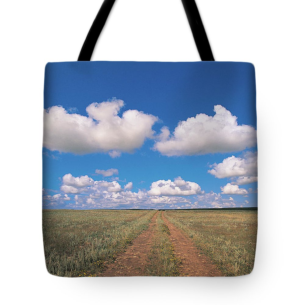 Grainy Tote Bag featuring the photograph Dirt Road On Prairie With Cumulus Sky by Mimotito