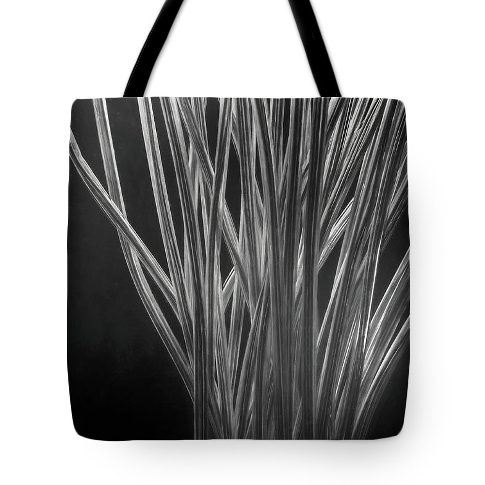 Divergence Tote Bags