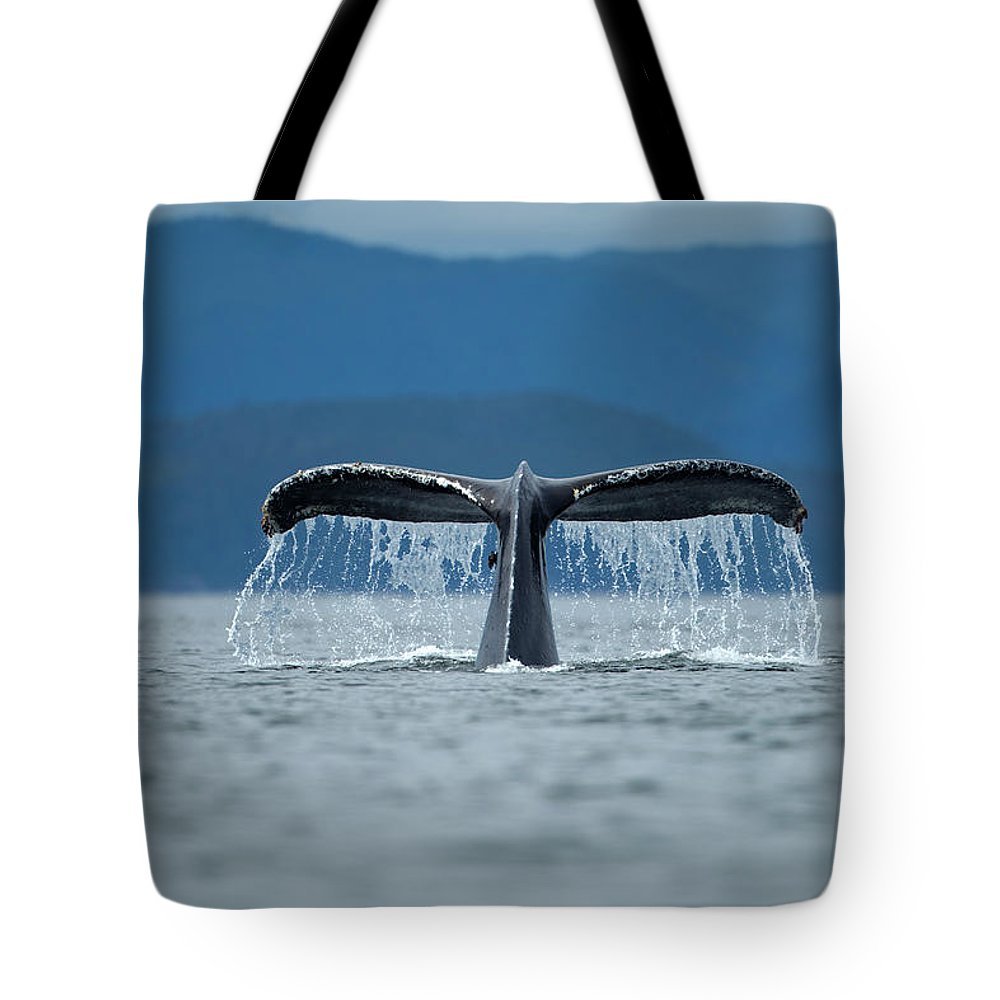 Diving Into Water Tote Bag featuring the photograph Diving Humpback Whale, Alaska by Paul Souders