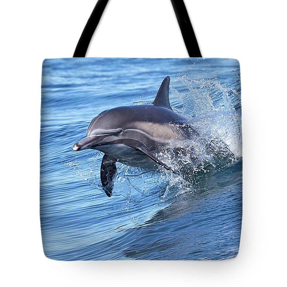 Wake Tote Bag featuring the photograph Dolphin Riding Wake by Greg Boreham (treklightly)