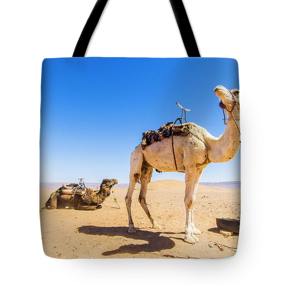 Working Animal Tote Bag featuring the photograph Draa Valley, Camel At Tinfou by Maremagnum