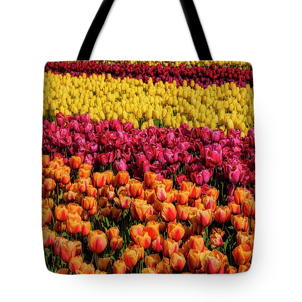 Tulip Tote Bag featuring the photograph Dreaming Of Endless Colorful Tulips by Garry Gay