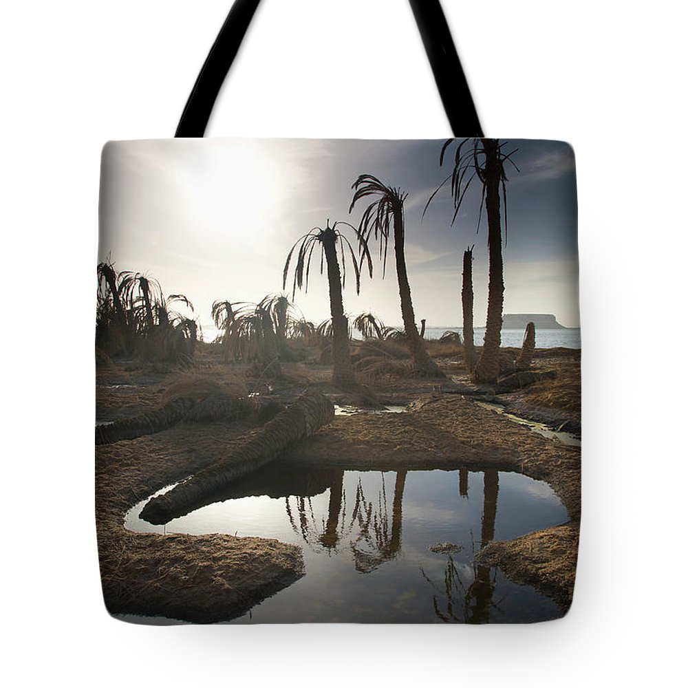 Scenics Tote Bag featuring the photograph Dried Up Palm Trees And Salt Water On by Sean White / Design Pics