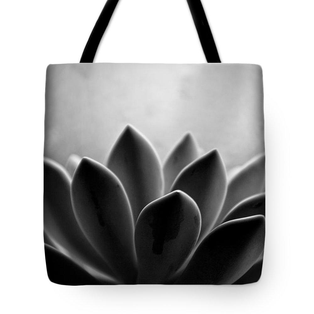Petal Tote Bag featuring the photograph Echeveria Setosa by Travis Payne