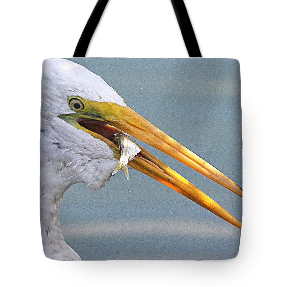Nature Tote Bag featuring the photograph Egret Finishing Lunch by Rob Wallace Images