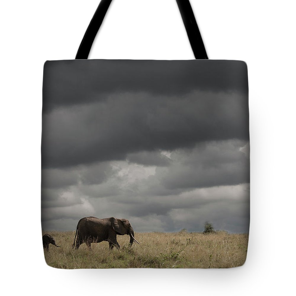 Kenya Tote Bag featuring the photograph Elephant Under Cloudy Sky by Buena Vista Images