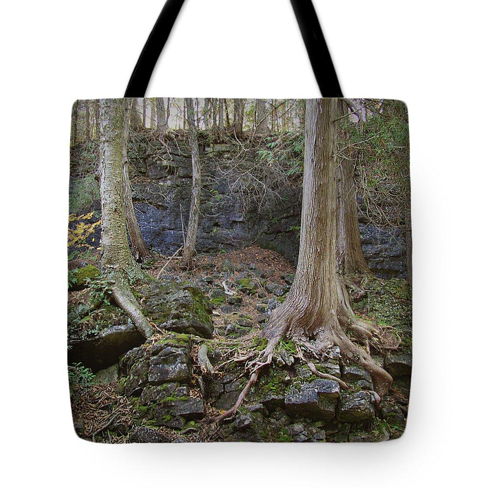 Elora Tote Bag featuring the digital art Elora 4 by Alexander Ahilov