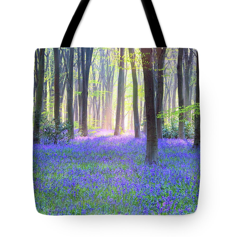 Scenics Tote Bag featuring the photograph English Bluebell Wood At Dawn by Doug Chinnery