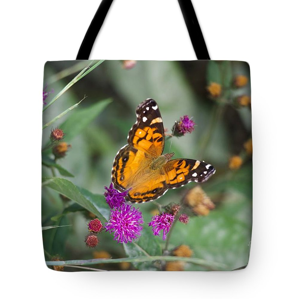 Butterfly Tote Bag featuring the photograph Equinox Butterfly by Clay Cofer
