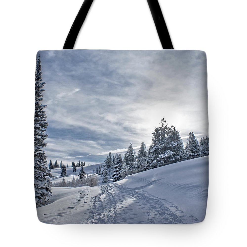 Shadow Tote Bag featuring the photograph Escape From Beaver Creek by Rauch Jonathan Photographies