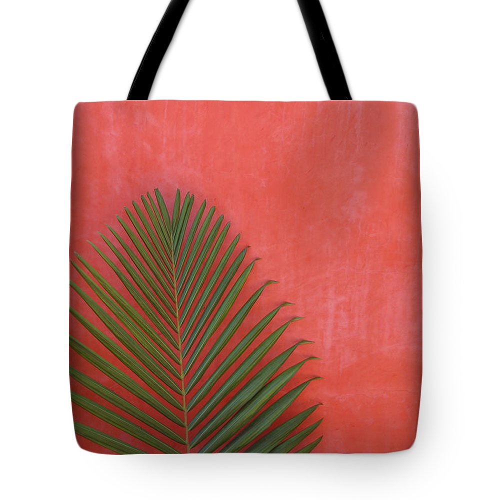 Recreational Pursuit Tote Bag featuring the photograph Exotic Background by Lucgillet