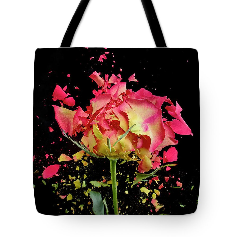 Black Background Tote Bag featuring the photograph Exploding Rose by Don Farrall