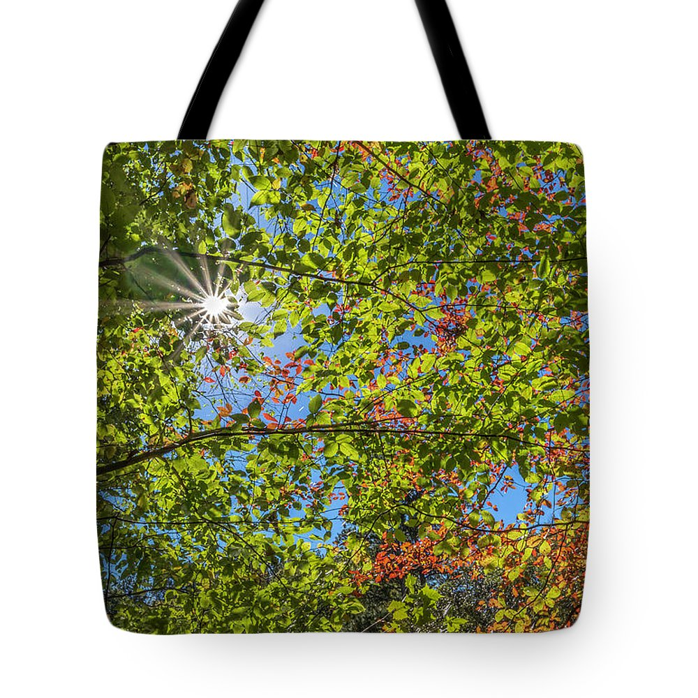 Fall Tote Bag featuring the photograph Fall Beginnings by Keith Smith