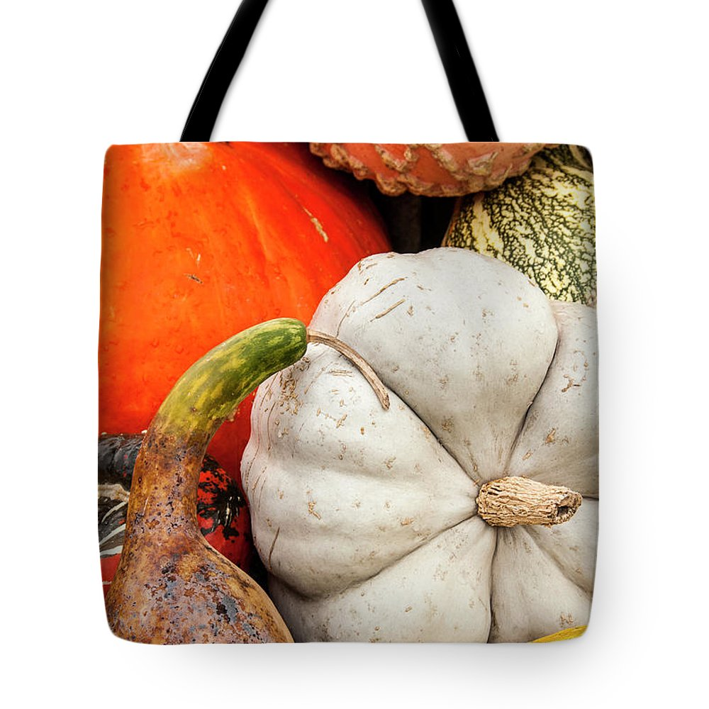 Season Tote Bag featuring the photograph Fall Season Squash And Pumpkins by M Timothy O'keefe