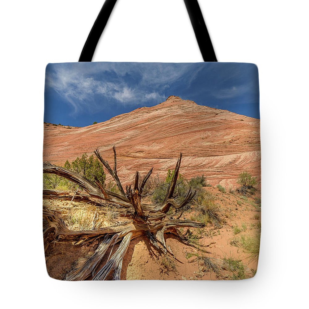 #deserts #nature #food #love #desert #travel #colors #photography #foodporn #adventure #deserto #art #landscape #mountains #socompa #beautiful #rocks #naturephotography #tree #delicious #water #desierto #light #dark #gemstones #sorrow #photooftheda Tote Bag featuring the photograph Fallen Tree by Jerry Cahill