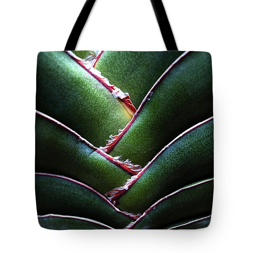Natural Pattern Tote Bag featuring the photograph Fan Leave Succulent Plant by Tontygammy + Images