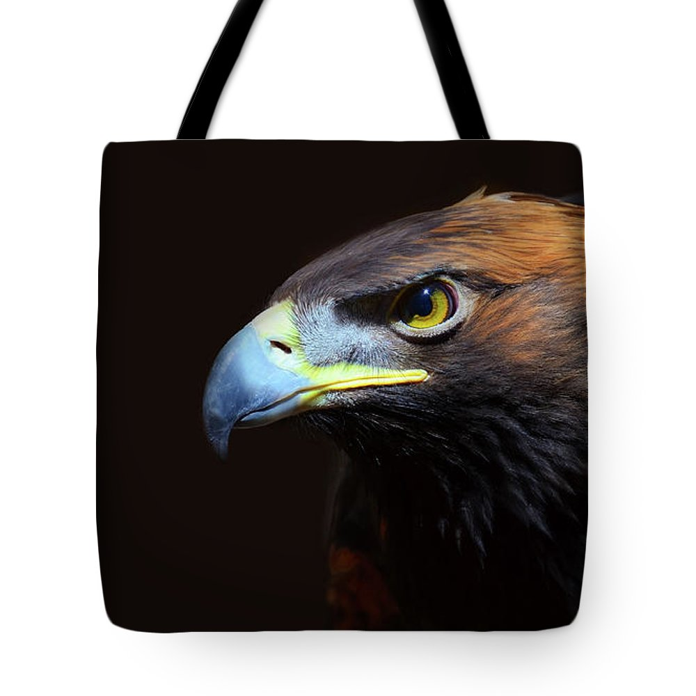 Animal Themes Tote Bag featuring the photograph Female Golden Eagle by A L Christensen