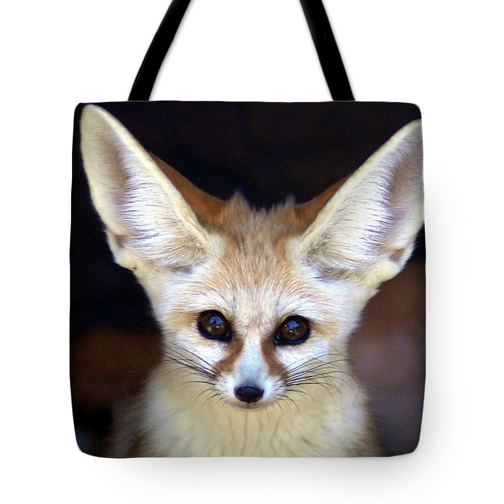 Alertness Tote Bag featuring the photograph Fennec Fox by Floridapfe From S.korea Kim In Cherl