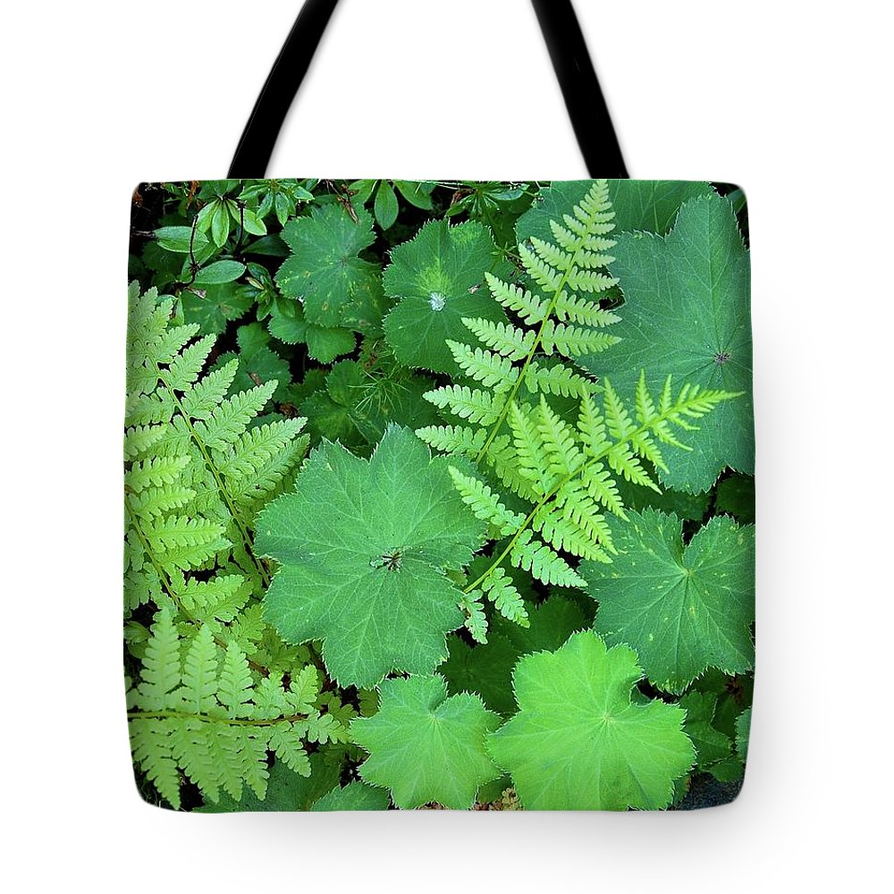 Outdoors Tote Bag featuring the photograph Ferns And Ladys Mantle by Pamela Long