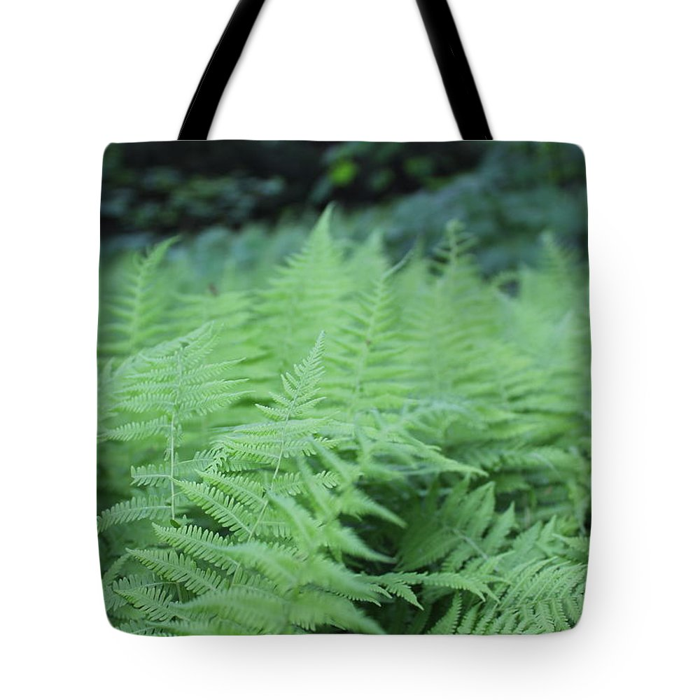 Plant Life Tote Bag featuring the photograph Ferns by Brittany Galipeau