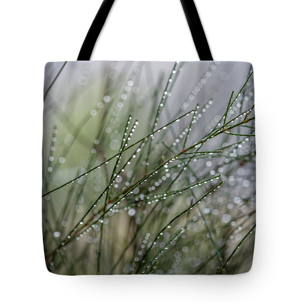 Out Of Focus Tote Bags
