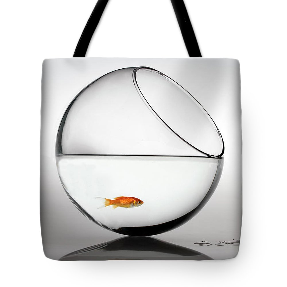 White Background Tote Bag featuring the photograph Fish In Fish Bowl Stressed In Danger by Paul Strowger