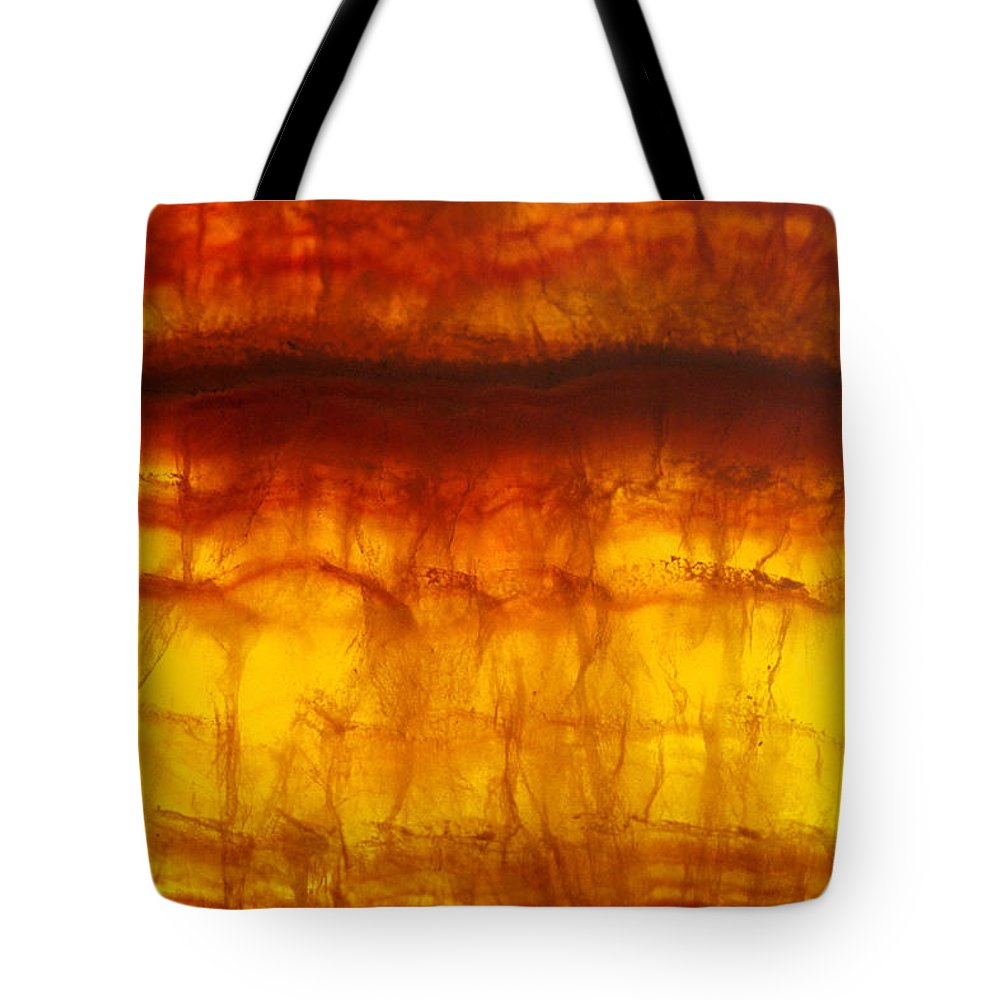 Mineral Tote Bag featuring the photograph Flourite by David Wasserman