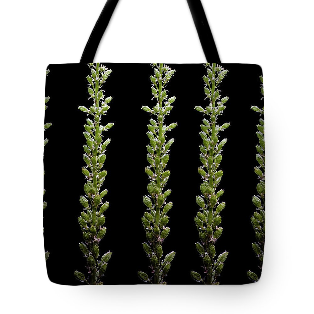 Bud Tote Bag featuring the photograph Flower Buds On Black Background by Michael Duva
