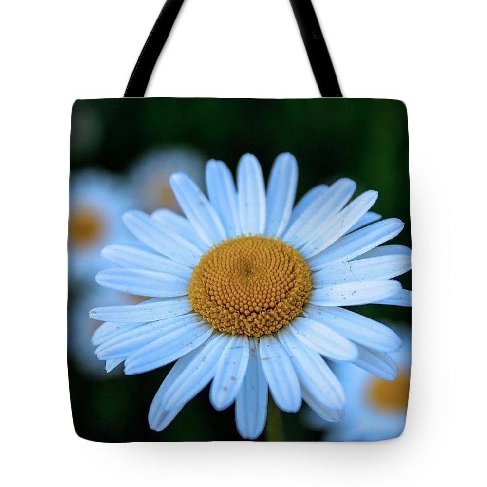 Flowers Tote Bag featuring the photograph Flower by D N