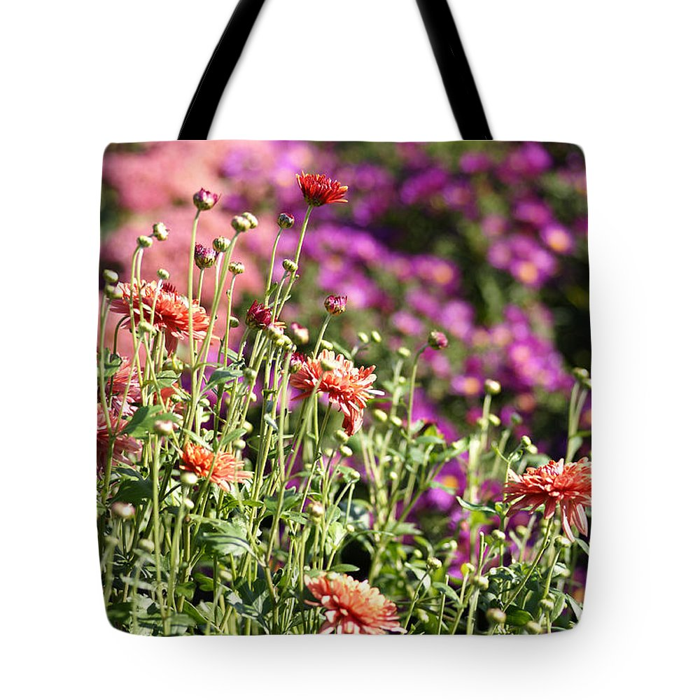 Flowerbed Tote Bag featuring the photograph Flowerbed With Michaelmas Daisies by Schnuddel