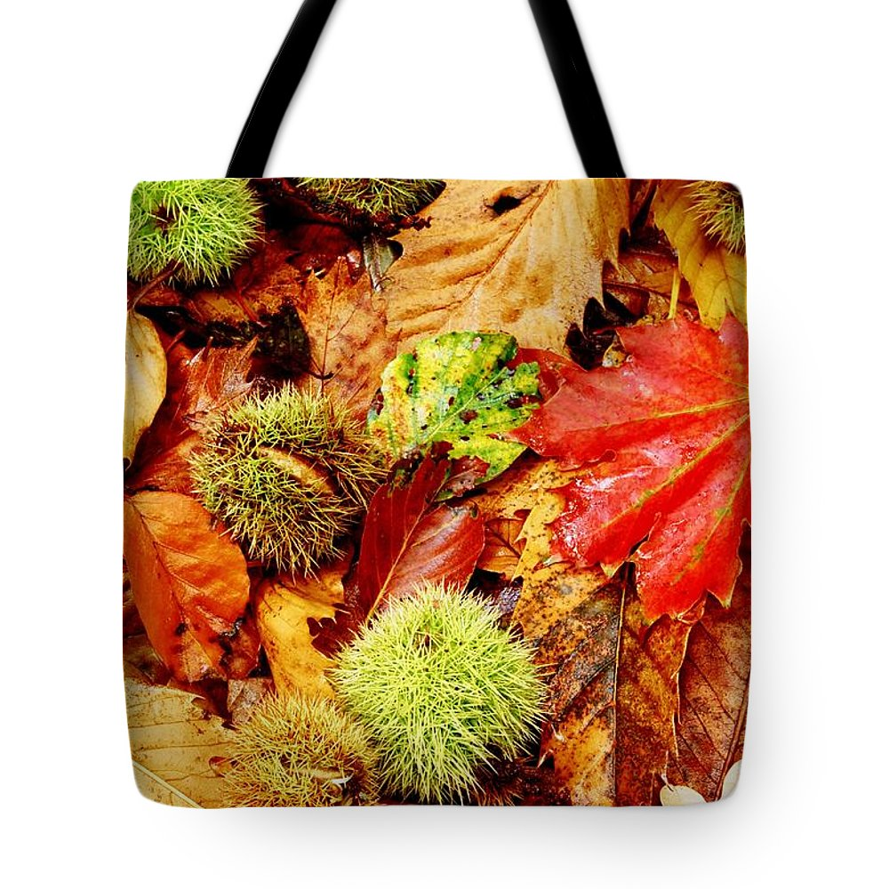 Tranquility Tote Bag featuring the photograph Forest Floor by Andrew Turner