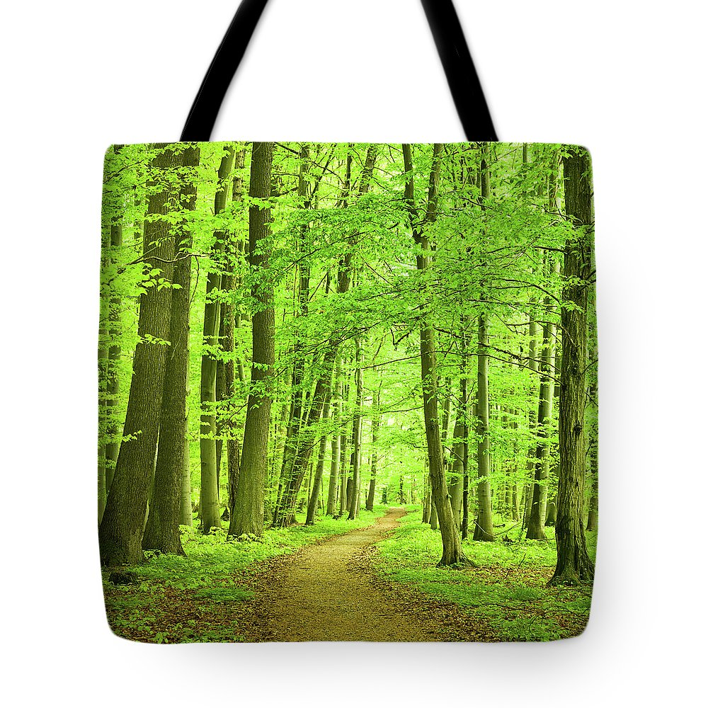 Curve Tote Bag featuring the photograph Forest Path by Nikada